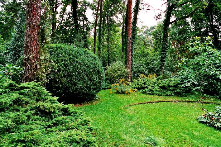 modernistyczny ogród otaczający Szklaną Willę w Podkowie Leśnej, zdjęcie Magda Prosińska